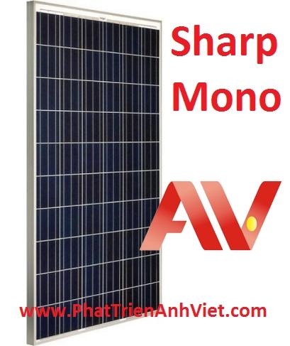 Pin năng lượng mặt trời Sharp